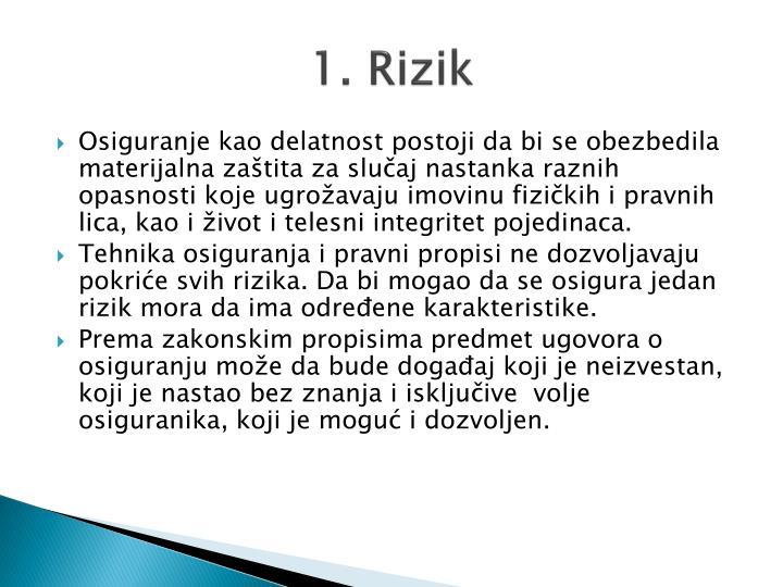 1 rizik