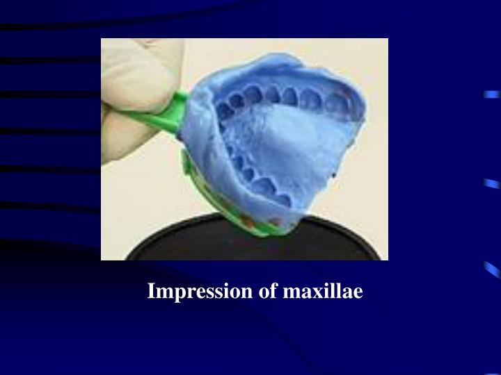 Impression of maxillae