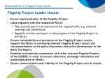 flagship project leader should