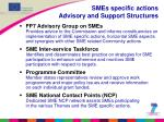 smes specific actions advisory and support structures