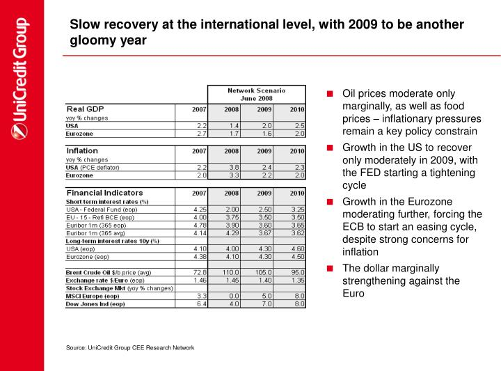 Slow recovery at the international level, with 2009 to be another gloomy year
