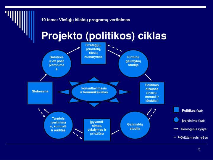 10 tema vie j i laid program vertinimas projekto politikos ciklas