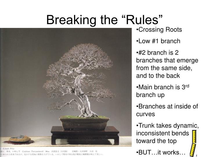 """Breaking the """"Rules"""""""