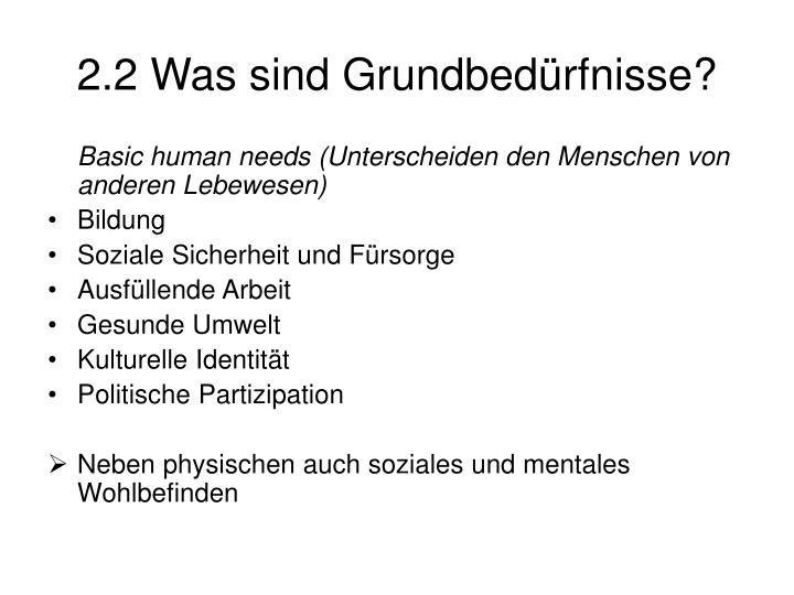 2.2 Was sind Grundbedürfnisse?