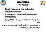 neurotoxic1
