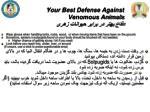 your best defense against venomous animals2