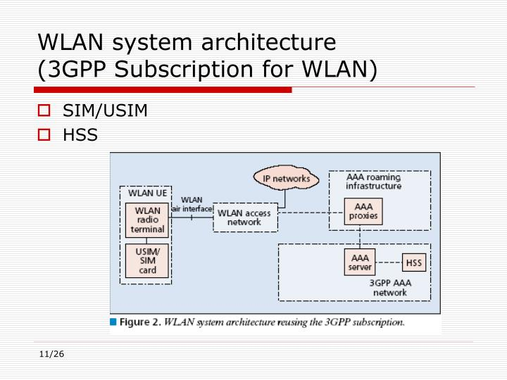 WLAN system architecture