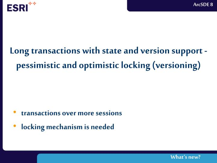 Long transactions with state and version support - pessimistic and optimistic locking (versioning)