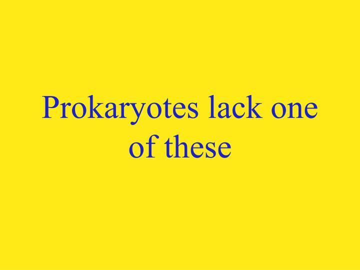 Prokaryotes lack one of these