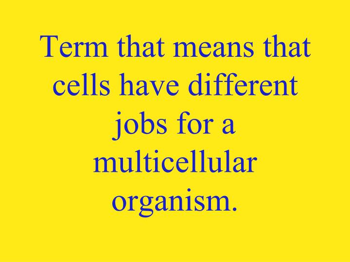 Term that means that cells have different jobs for a multicellular organism.