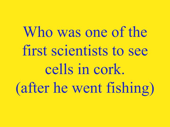 Who was one of the first scientists to see cells in cork.