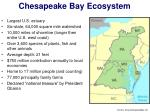 chesapeake bay ecosystem