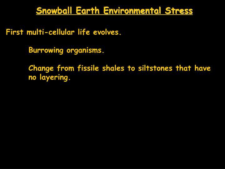 Snowball Earth Environmental Stress