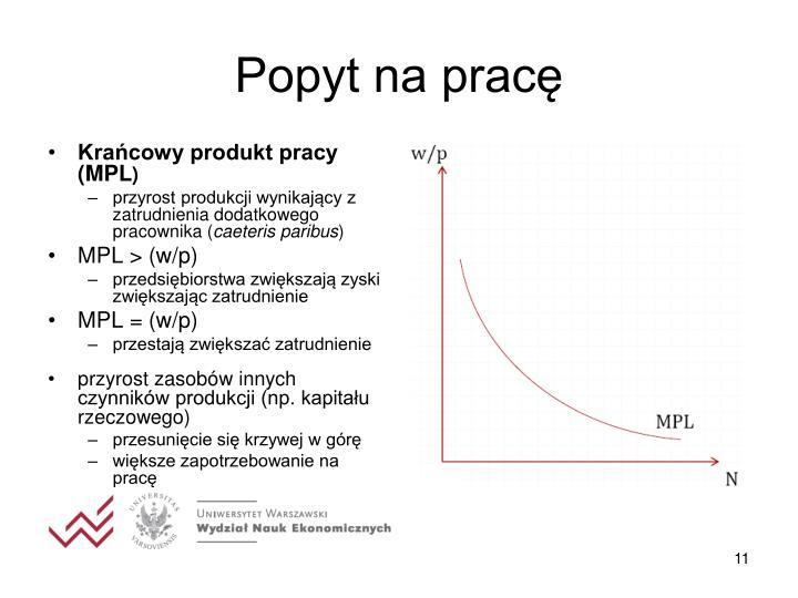 Krańcowy produkt pracy (MPL