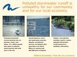polluted stormwater runoff is unhealthy for our community and for our local economy