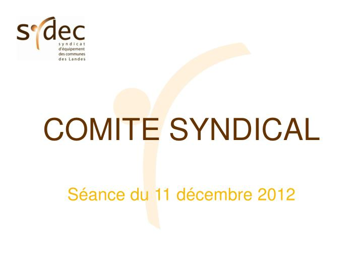 COMITE SYNDICAL