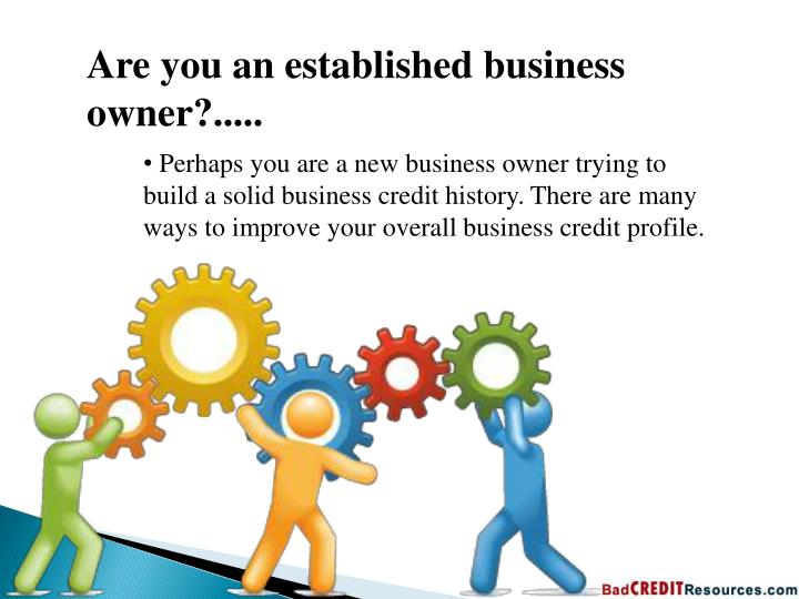 Are you an established business owner?.....