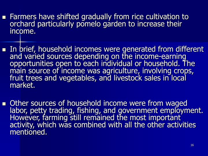 Farmers have shifted gradually from rice cultivation to orchard particularly pomelo garden to increase their income.