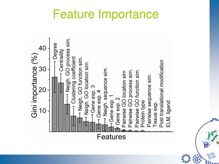 Feature Importance