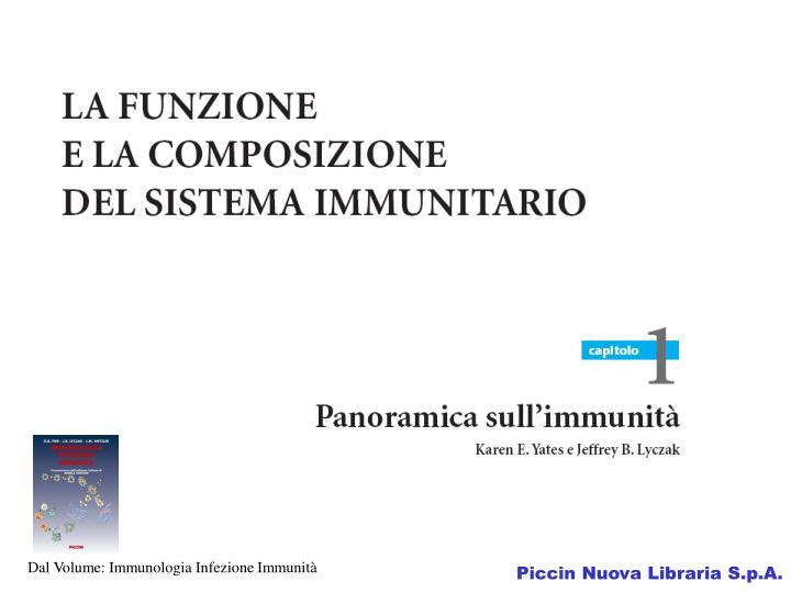 Dal Volume: Immunologia Infezione Immunità