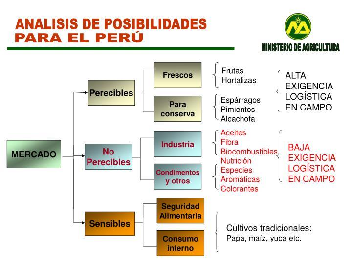 ANALISIS DE POSIBILIDADES