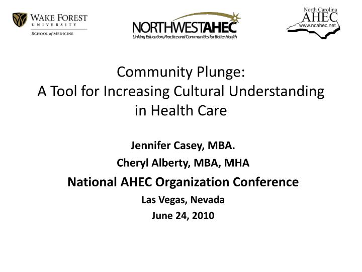 community plunge a tool for increasing cultural understanding in health care n.