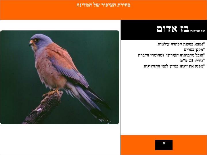בחירת הציפור של המדינה