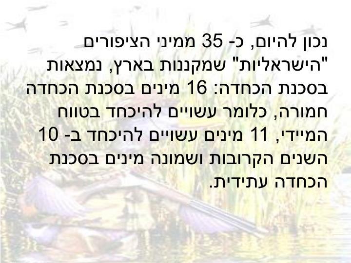 """נכון להיום, כ- 35 ממיני הציפורים """"הישראליות"""" שמקננות בארץ, נמצאות בסכנת הכחדה:16 מינים בסכנת הכחדה חמורה, כלומר עשויים להיכחד בטווח המיידי, 11 מינים עשויים להיכחד ב- 10 השנים הקרובות ושמונה מינים בסכנת הכחדה עתידית."""