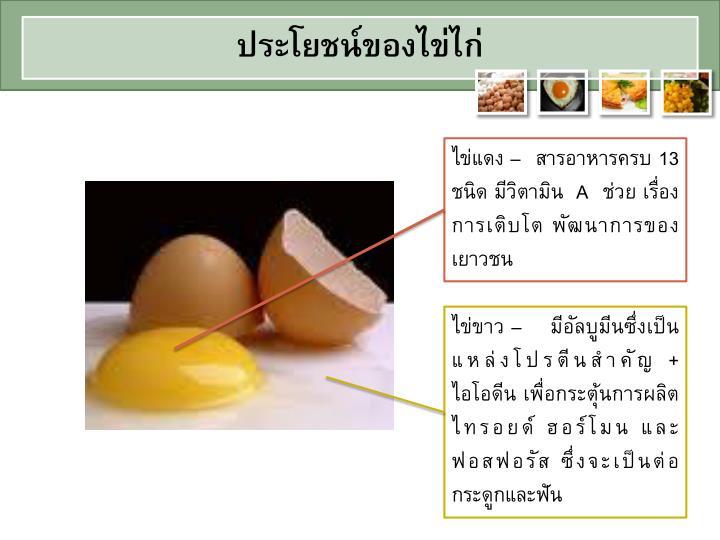 ประโยชน์ของไข่ไก่