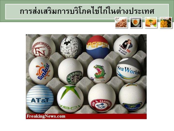 การส่งเสริมการบริโภคไข่ไก่ในต่างประเทศ