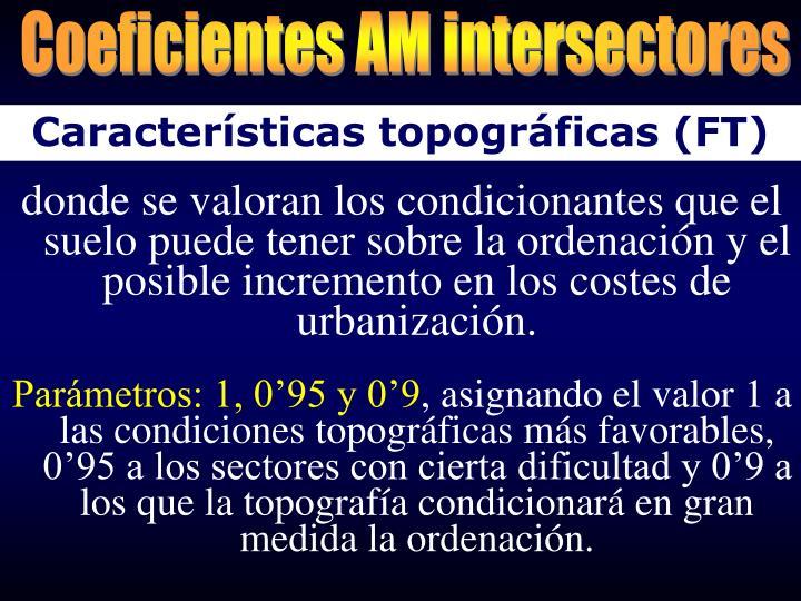 Coeficientes AM intersectores