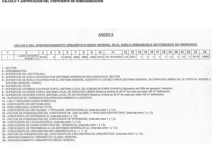 CALCULO Y JUSTIFICACIÓN DEL COEFICIENTE DE HOMOGENIZACIÓN
