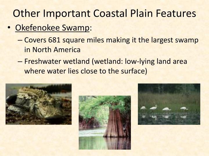 Other Important Coastal Plain Features