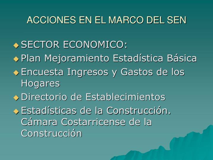 ACCIONES EN EL MARCO DEL SEN