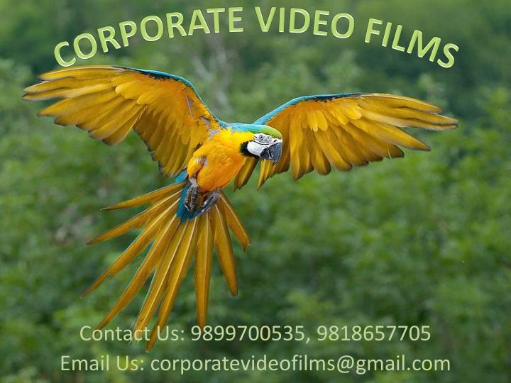 contact us 9899700535 9818657705 email us corporatevideofilms@gmail com n.