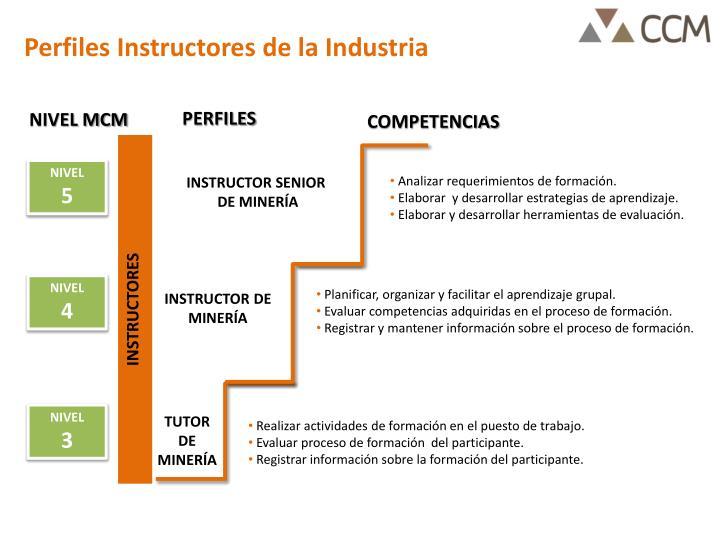 Perfiles Instructores de la Industria