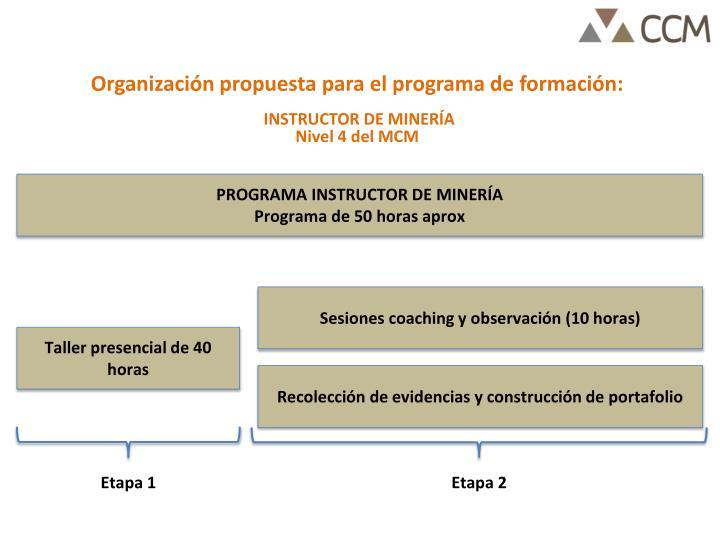 Organización propuesta para el programa de formación: