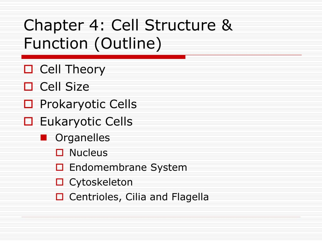 Ppt Chapter 4 Cell Structure Function Outline Powerpoint Prokaryotic N