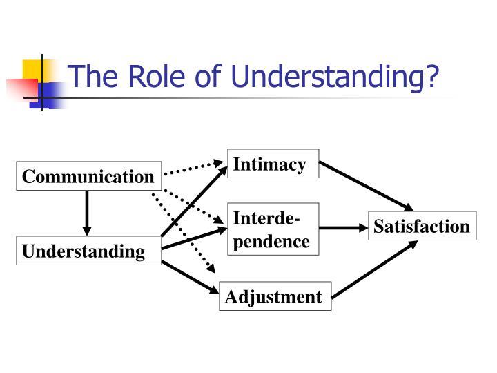 The Role of Understanding?