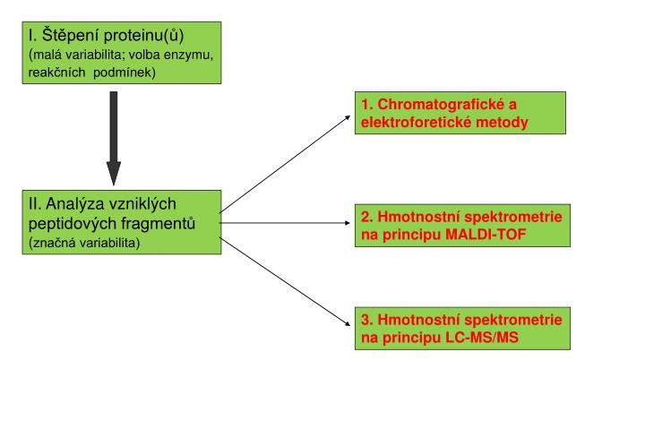 I. Štěpení proteinu(ů)