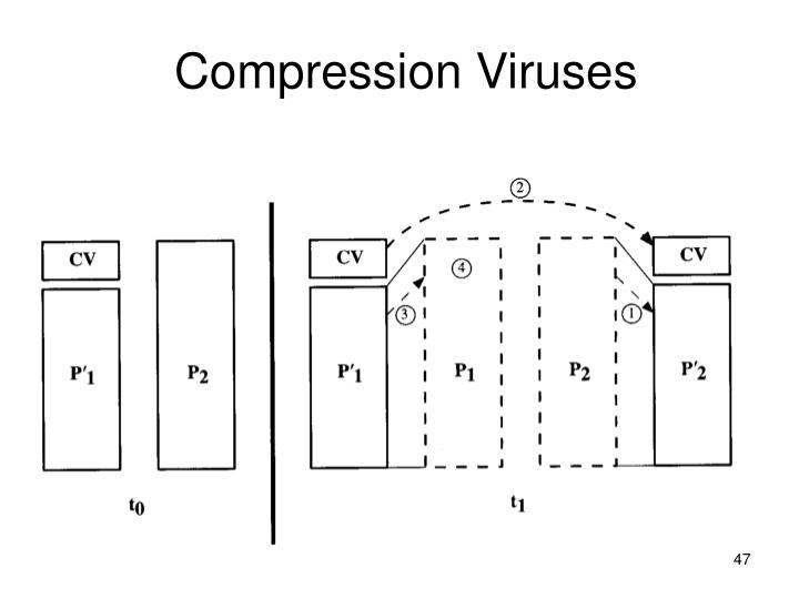 Compression Viruses