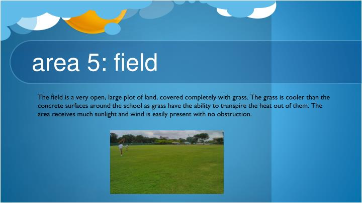 area 5: field