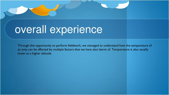 overall experience