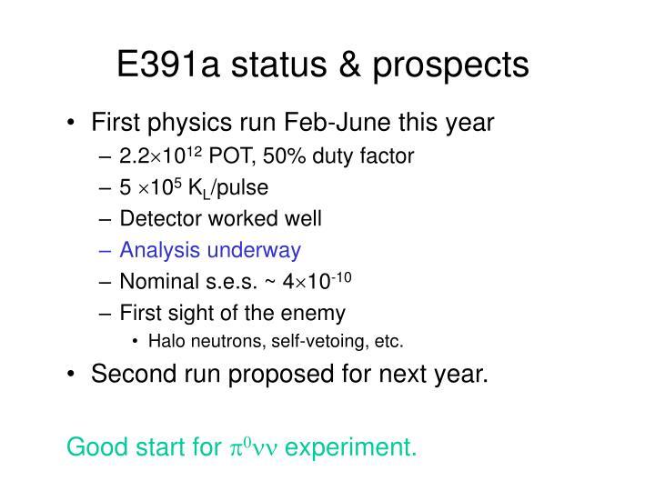 E391a status & prospects