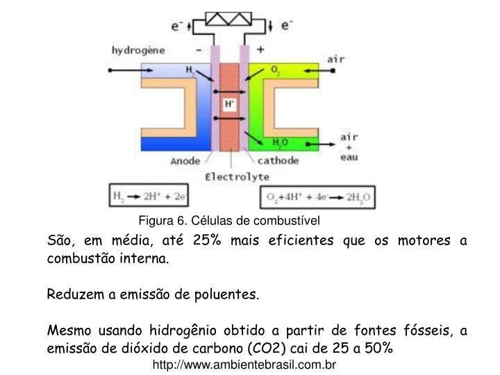 Figura 6. Células de combustível