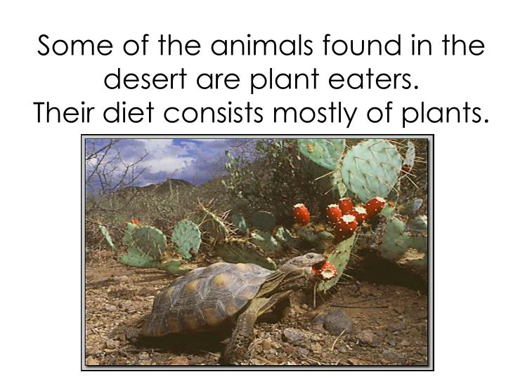Some of the animals found in the desert are plant eaters.