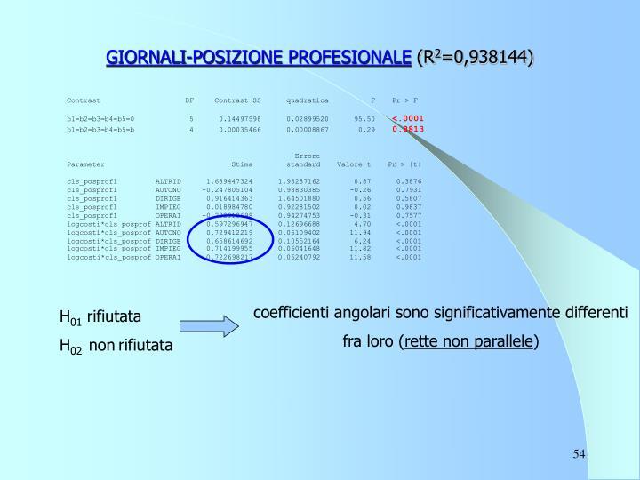 GIORNALI-POSIZIONE PROFESIONALE