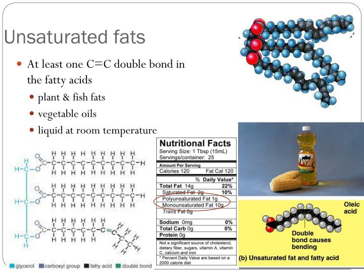 Ppt Intro To Organic Molecules Amp Lipids Powerpoint