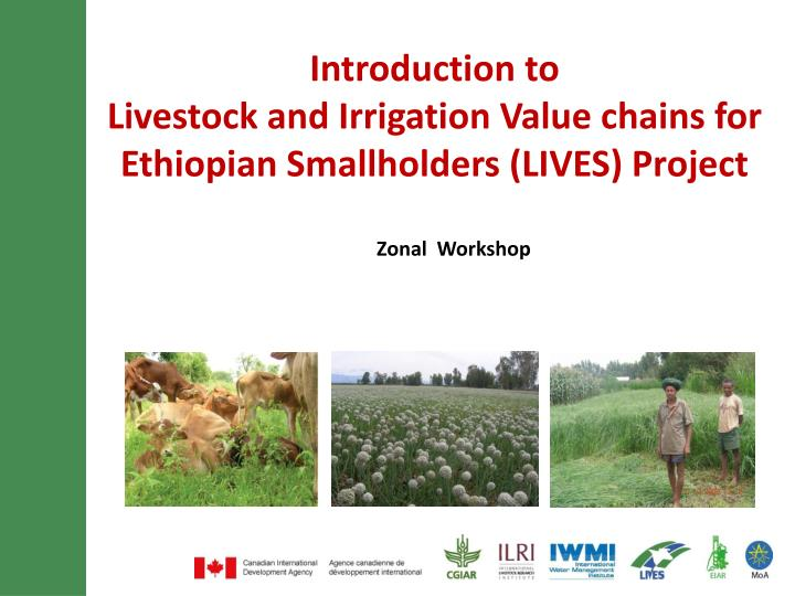 introduction to livestock and irrigation value chains for ethiopian smallholders lives project n.