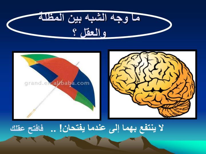 ما وجه الشبه بين المظلة والعقل